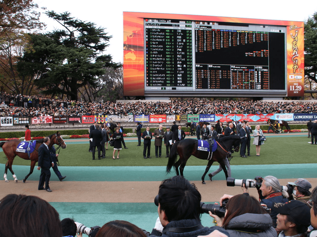 ジャパンカップ2016の出走予定馬21頭(うち外国馬3頭)|競走馬・想定騎手